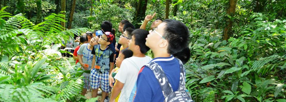 Học sinh tìm hiểu về hệ sinh thái tại Vườn Quốc Gia Ba Vì, Hà Nội